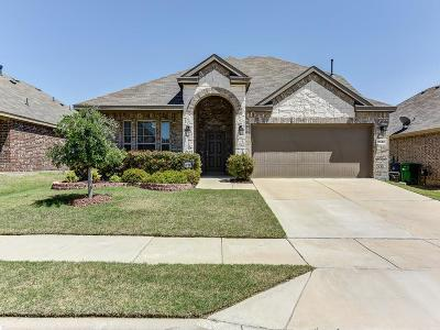 Little Elm Single Family Home For Sale: 2417 Michelle Creek Drive