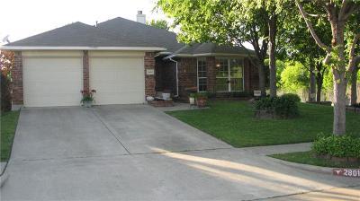 Mesquite Single Family Home For Sale: 2801 Shelduck Drive
