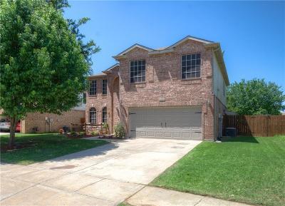 Denton Single Family Home For Sale: 8204 Mirror Rock Lane