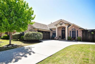 Little Elm Single Family Home For Sale: 2424 Trailview Drive