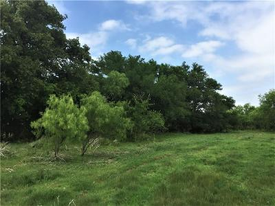 Erath County Farm & Ranch For Sale: 6022 SW Us Highway 377 Highway