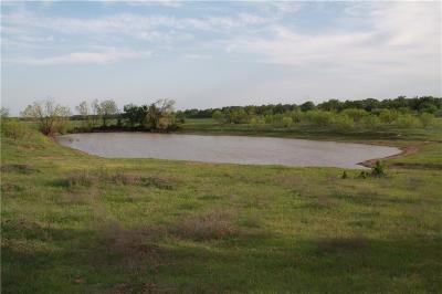 Stephenville Farm & Ranch For Sale: 0000 County Road 456