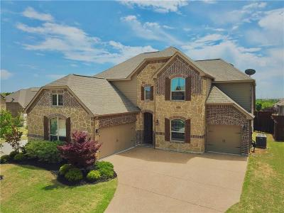 Frisco Single Family Home For Sale: 2493 Bunny Run Lane
