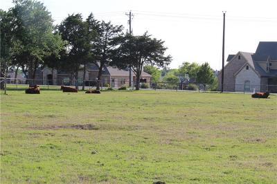 Wylie Farm & Ranch For Sale: 2410 Drain Drive