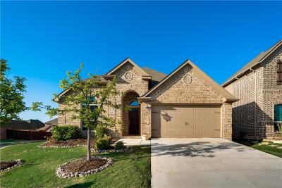 Little Elm Single Family Home For Sale: 2381 Ranchview Drive
