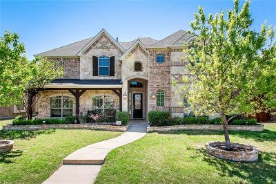 Frisco Single Family Home For Sale: 3453 Berkwood Place