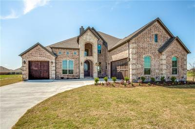 Gunter Single Family Home For Sale: 2013 Fox Bend Trace