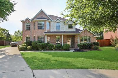 Carrollton Single Family Home For Sale: 3805 Island Court