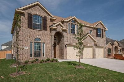 Grand Prairie Single Family Home For Sale: 7128 Playa Norte Drive