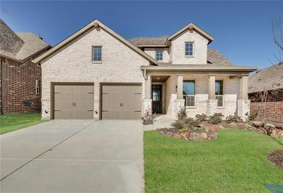 Mckinney Single Family Home For Sale: 313 Village Creek Drive