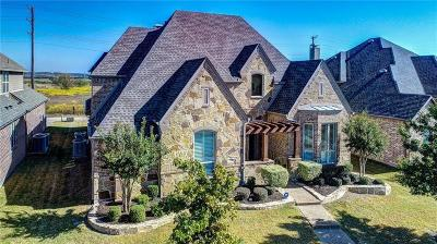 Frisco Single Family Home For Sale: 13028 Belle Isle Lane