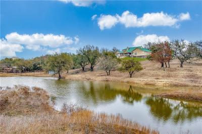 Parker County Single Family Home For Sale: 389 Meadow Hill Road