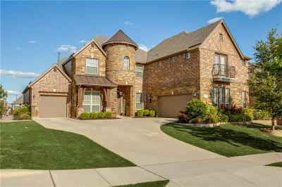 Fort Worth Single Family Home For Sale: 9728 Flatiron Street
