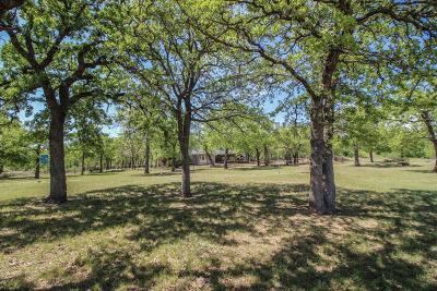 Jacksboro Farm & Ranch For Sale: Woodard Road