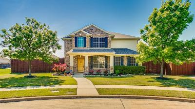 Allen Single Family Home For Sale: 1207 Vineyard Drive