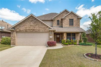 Little Elm Single Family Home For Sale: 1401 Villa Paloma Boulevard