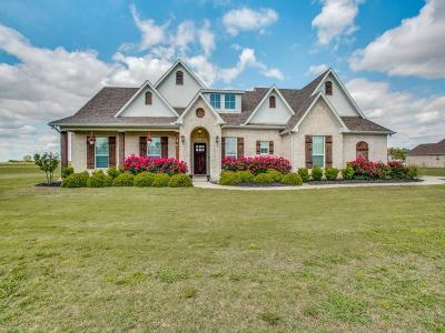 Pilot Point Single Family Home Active Contingent: 2005 Twin Creeks Circle