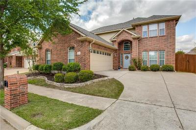 McKinney Single Family Home For Sale: 8612 Riverwalk Trail