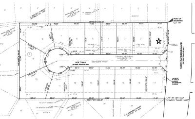Grapevine Residential Lots & Land For Sale: 901 N Park Boulevard #1