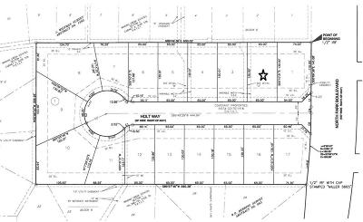 Grapevine Residential Lots & Land For Sale: 901 N Park Boulevard #2