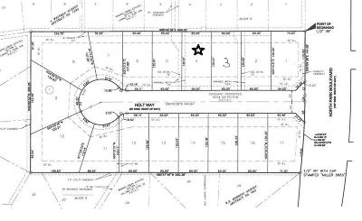 Grapevine Residential Lots & Land For Sale: 901 N Park Boulevard #4