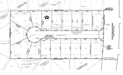 Grapevine Residential Lots & Land For Sale: 901 N Park Boulevard #6