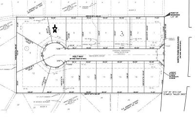Grapevine Residential Lots & Land For Sale: 901 N Park Boulevard #7