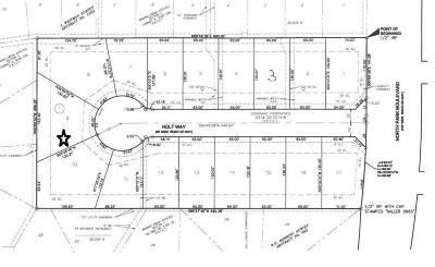 Grapevine Residential Lots & Land For Sale: 901 N Park Boulevard #9