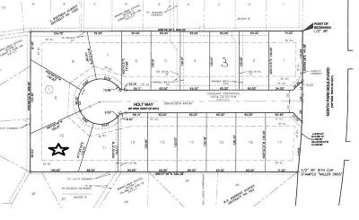 Grapevine Residential Lots & Land For Sale: 901 N Park Boulevard #10