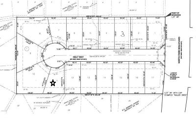 Grapevine Residential Lots & Land For Sale: 901 N Park Boulevard #11