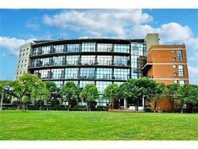Dallas Condo For Sale: 3110 Thomas Avenue #706