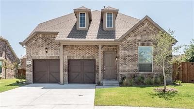 McKinney Single Family Home For Sale: 4113 Rainey Street