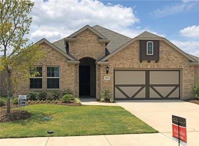 Forney Single Family Home For Sale: 1673 Pegasus Drive