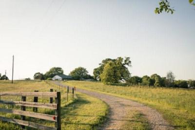 Cedar Creek Lake, Athens, Kemp Farm & Ranch For Sale: 8043 Hwy 19 N
