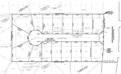 Grapevine Residential Lots & Land For Sale: 901 N Park Boulevard