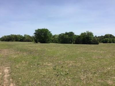 Cedar Creek Lake, Athens, Kemp Farm & Ranch For Sale: Tr 11 Fm 85