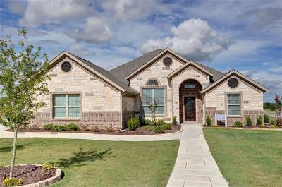 Wise County Single Family Home For Sale: 110 Highland Hills Boulevard