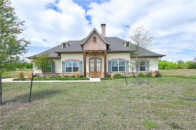 Grayson County Single Family Home For Sale: 206 Palisades Drive
