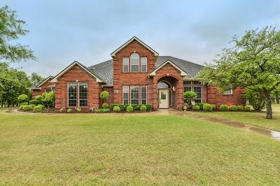 Aledo Single Family Home Active Contingent: 141 Rim Rock Road