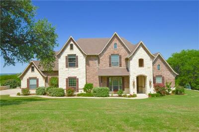 Granbury Single Family Home For Sale: 2508 Wills Way Drive