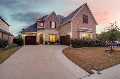 Rockwall Single Family Home For Sale: 217 Chatfield Drive