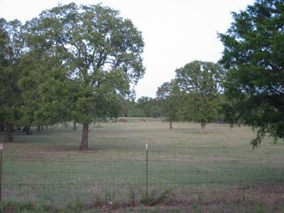 Cedar Creek Lake, Athens, Kemp Farm & Ranch For Sale: 18017 County Road 4065