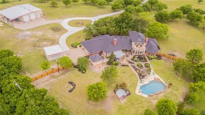 Aledo Single Family Home For Sale: 316 Meadow Hill Road