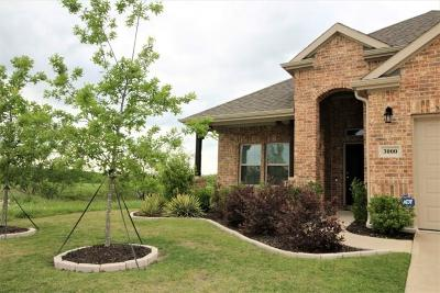 Royse City Single Family Home For Sale: 3000 Trellis Way
