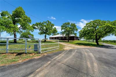 Springtown Single Family Home Active Contingent: 180 Big Salty Lane