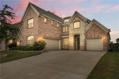 Tarrant County Single Family Home For Sale: 6923 Seascape Drive