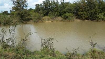 Millsap Farm & Ranch For Sale: 000b S Fm 113