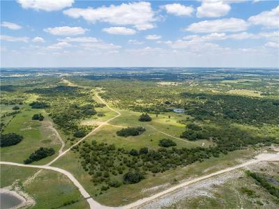 Stephenville Farm & Ranch For Sale: 2379 River Hills Road