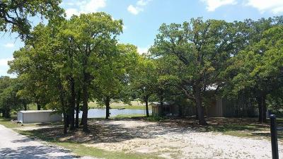Springtown Single Family Home For Sale: 3981 W Highway 199
