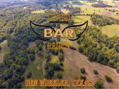 Ben Wheeler Farm & Ranch For Sale: 2203 Fm 858